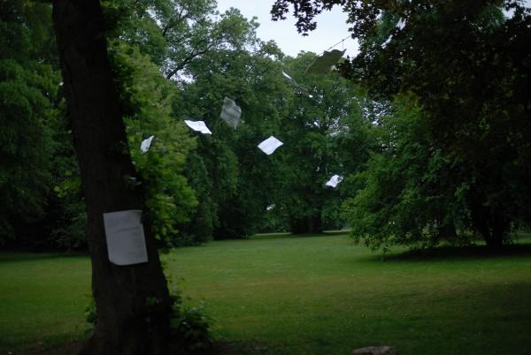 https://www.timhelbig.de/files/gimgs/th-75_Liszt2011(park).jpg